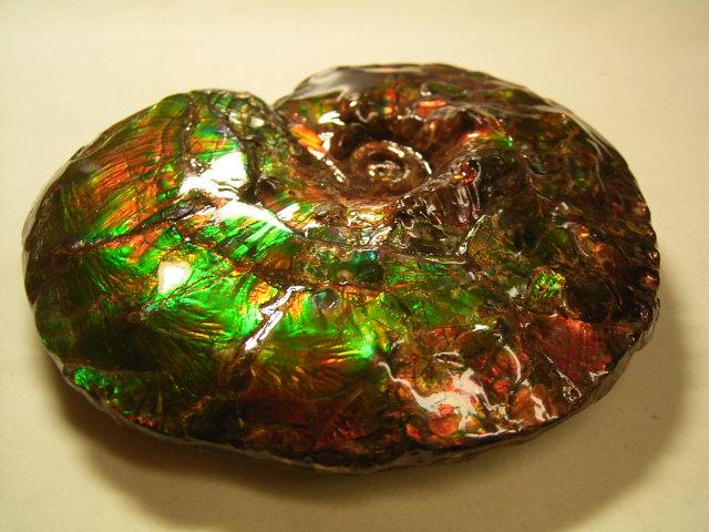 アンモライトのアンモライト原石