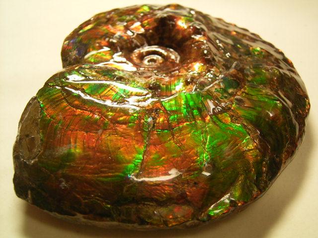 アンモライトの原石